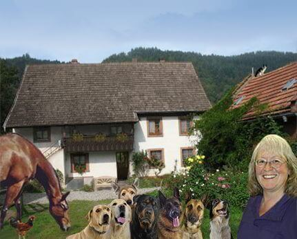 Hundepension Hundebetreuung Freiburg Gerlinde Wax